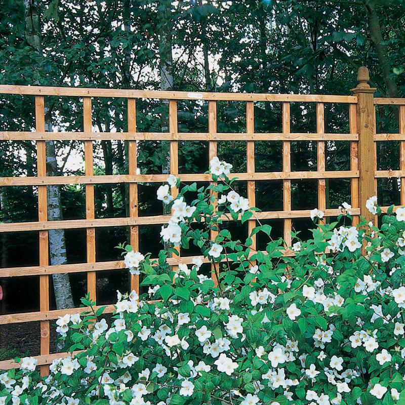 Arched Trellis Installation